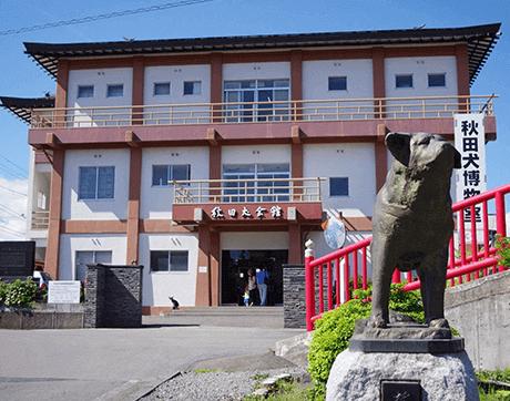 Tỉnh Akita - Bảo Tàng Chó Akita