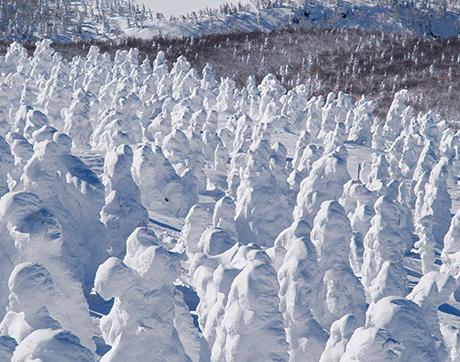 """Tỉnh Aomori - """"Người Tuyết"""" Ở Núi Hakkoda"""